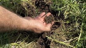 Microbiología y fertilización química: una sociedad para elevar la eficiencia y regenerar suelos