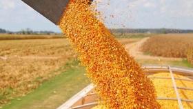 Los envíos de maíz de EE. UU. ya están coqueteando con máximos históricos