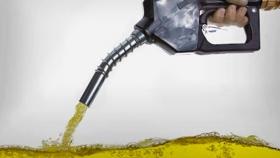 Según el diputado Fabio Quetglas, la ley de Biocombustibles es una oportunidad para comenzar a repensar el futuro