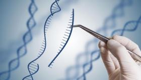 Kheiron Biotech avanza en sus investigaciones sobre edición genética