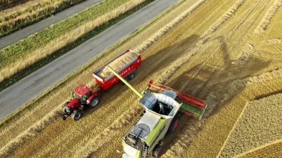 Qué hacer en el campo: las recomendaciones a las empresas del agro para tomar decisiones en medio de la incertidumbre