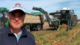 El tomate para industria vuelve a ser una alternativa de cultivo rentable y sostenible