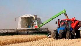 Con un aumento de retenciones al 15% del maíz y trigo se recaudará 300 millones de dólares adicionales