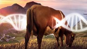 Neogen y la Sociedad Rural Argentina apuestan a la genómica en la producción ganadera