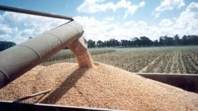 A poco de terminar la trilla de soja Brasil prevé sumar 11 millones de toneladas más respecto al año pasado