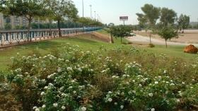 Reflexiones sobre la planificación de los nuevos espacios verdes