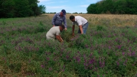 Agricultura holística en Quebracho