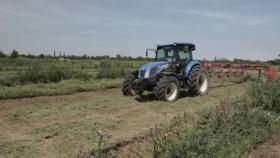 Alfazal: la idea de San Luis como solución productiva y ambiental