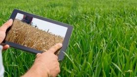 Buenas lluvias y buenos precios: ¿cuán bueno sería el aporte de dólares del agro en 2021?