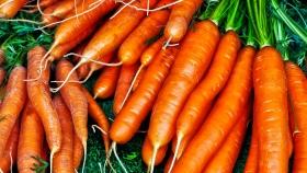 Zanahoria: el precio subió más de ocho veces