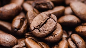 Comenzará en Bolivia subasta electrónica internacional de café