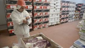 La exportación de carne a México despierta expectativas y cautela