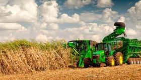 Una nueva máquina permite cosechar caña de azúcar hasta dos veces más